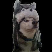 Mjölnir Husky